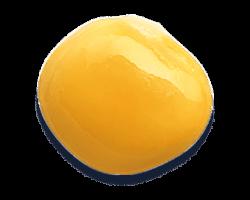 Lupino-Frutto-d'Italia-Madama-Oliva