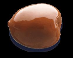 Oliva-Nocellara-del-Belice-D.O.P.-Frutto-dItalia-Madama-Oliva